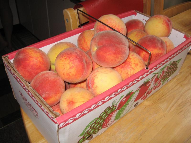 Peck of peaches